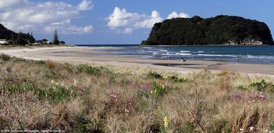 Whangamata beach & offshore islet