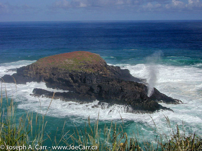 Kilauea Point blowhole on Moku 'Ae'ae islet