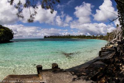 Kanamera Bay white sand beach and small island