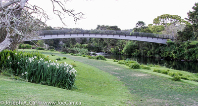 Pedestrian bridge across the Kerikeri River