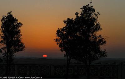 Sunrise over the Liwa Oasis