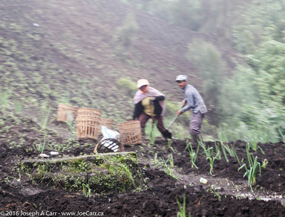 Villagers working in the fields