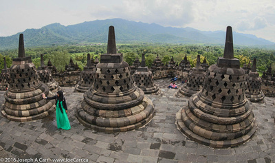 Fisheye view of the 72 bell-shaped stupas and the jungle beyond