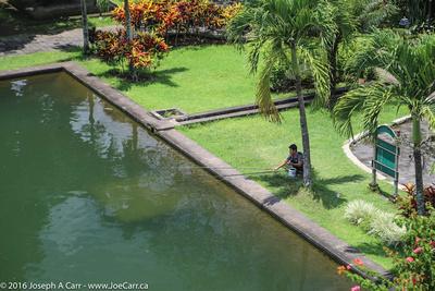 Fisherman on the artifical lake