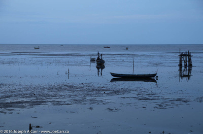Fishboats in the estuary at dusk