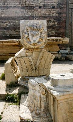 Medusa in marble, The Forum of Severus,