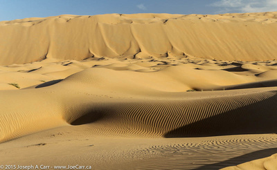 Sand dunes after sunrise