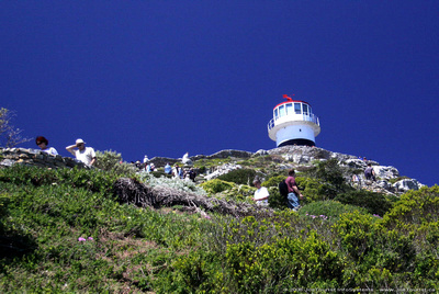 Cape Point pathway & lighthouse