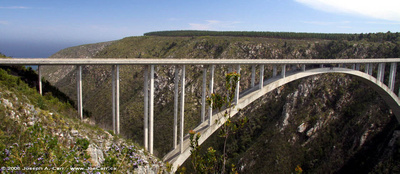 Bungee jump from the Storms River bridge
