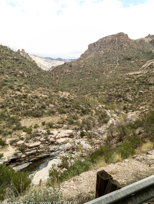Sabino Stream, Sonoran Desert and canyon ridgeline