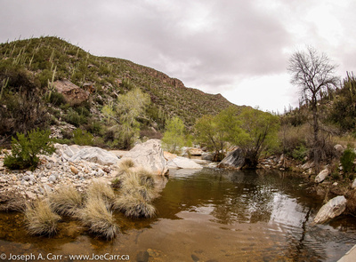 Crossing Sabino Creek pools