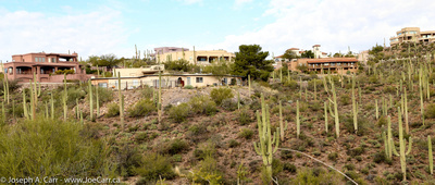 Houses and cactus in Sundance Estates