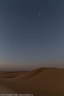 Half phased Moon over the sand dunes in the pre-dawn