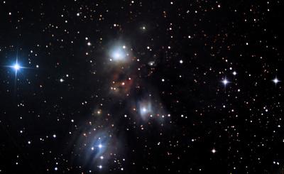 NGC 2170 Angel Nebula