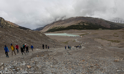 People on the trail to the toe of the Columbia Icefield