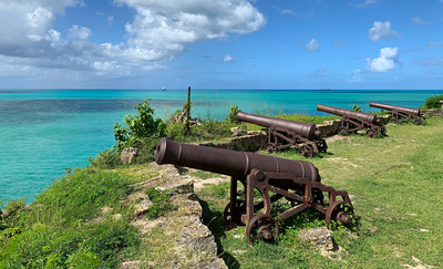 Cannons at abandoned Fort James