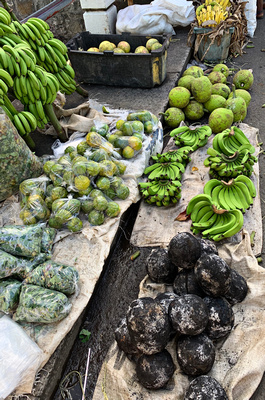 Burnt coconuts, bananas and breadfruit