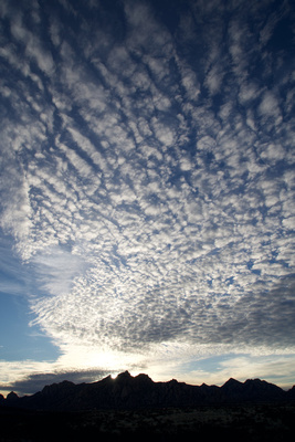 Cirrocumulus clouds in the sky over the Dragoon Mountains in the early morning