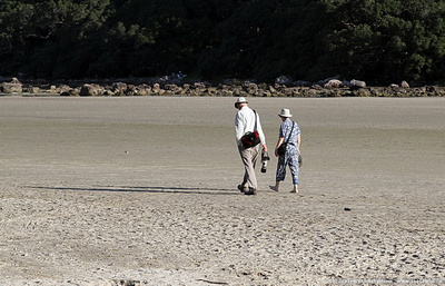 Walking the Otahu River estuary