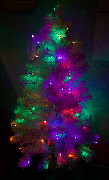 Christmas lights on the dining room tree