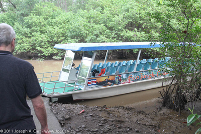 Mangrove swamp cruise boat
