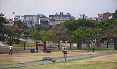 People walking their dogs and enjoying the park on a Sunday