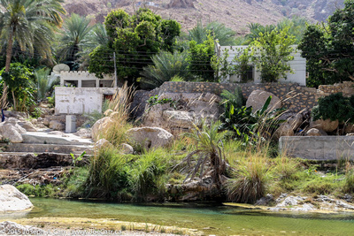 Houses beside the stream running through the oasis