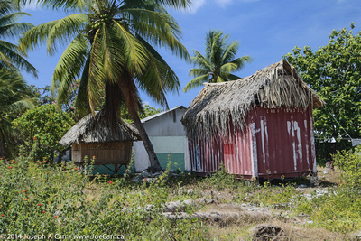 Thatched roof dwellings, one with mat sides and the other corrugated steel