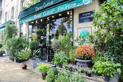 Daniel Guittat floral shop