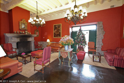 Waiting room with fireplace, flower arrangement and Christmas tree