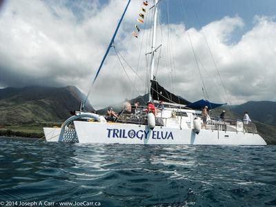 Trilogy Elua catamaran boat moored in the bay