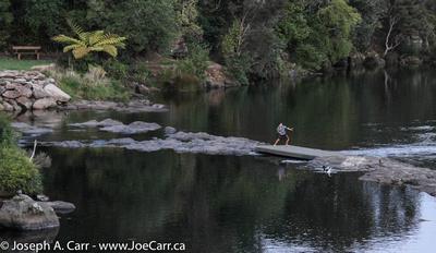 Boy playing on the Kerikeri River downstream from the pedestrian bridge