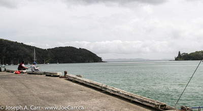 Fishing from the Mangonui fish dock