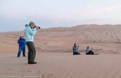 Group on the sand dunes in the pre-dawn