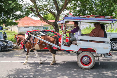 Street traffic, including a traditional horse cart called a cidomo