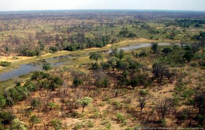 Aerial views of the Okavango Delta