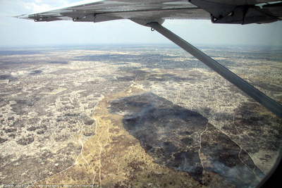 Aerial view of a burnt area near Maun