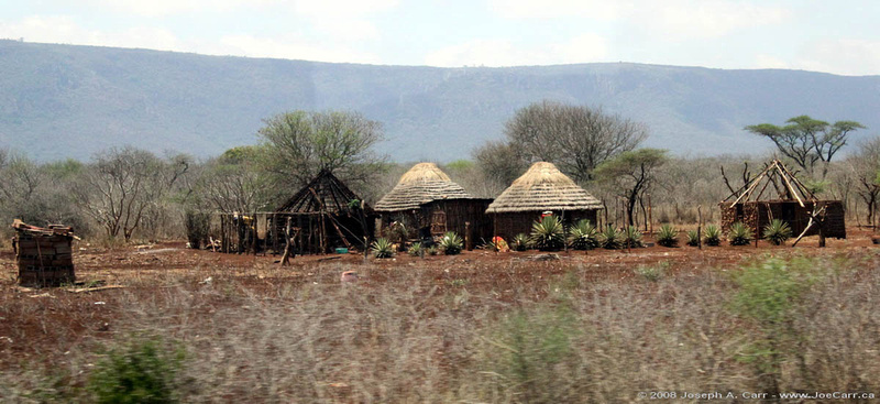 Thatched roof traditional homes