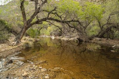 Sabino Stream pools