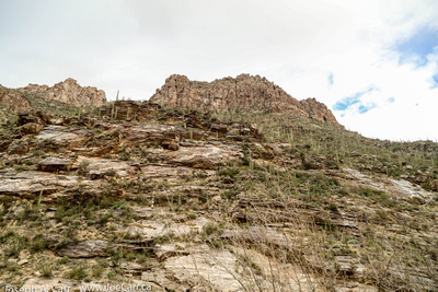 Layers of rock, the Sonoran Desert and the canyon ridge line