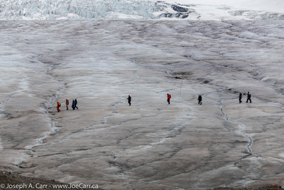 Hikers on the  Columbia Icefield
